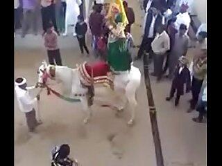 Hindi Girl Dance  91-8190090129